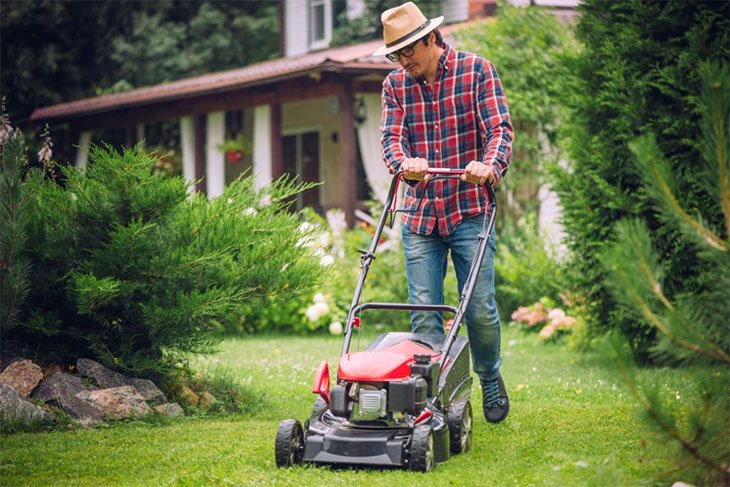 best rear roller lawn mower
