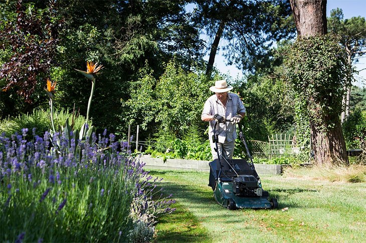 best cordless lawn mower for small garden
