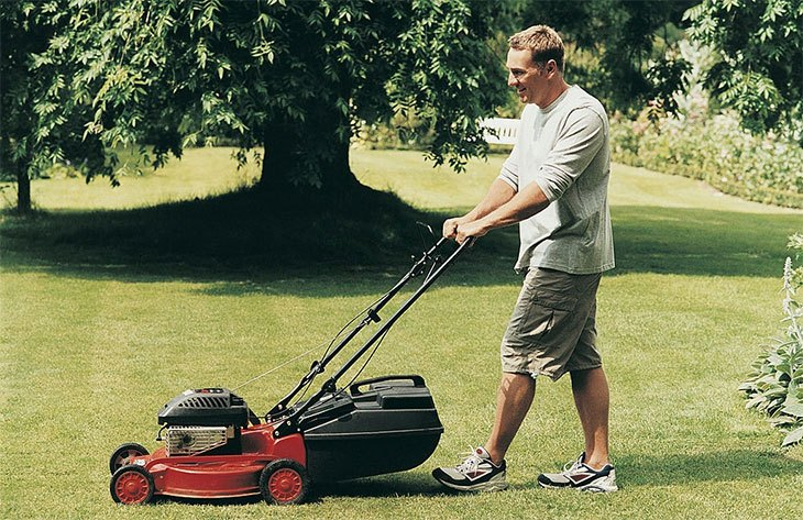 best rotary roller lawn mower