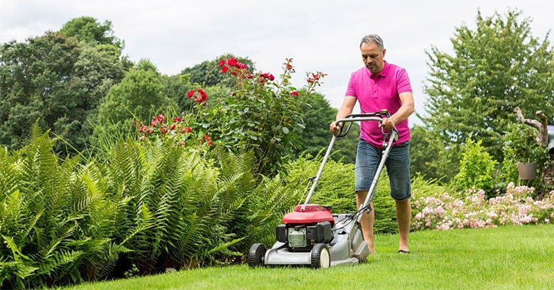 How to Choose the Best Roller Lawn Mower? All You Must Know