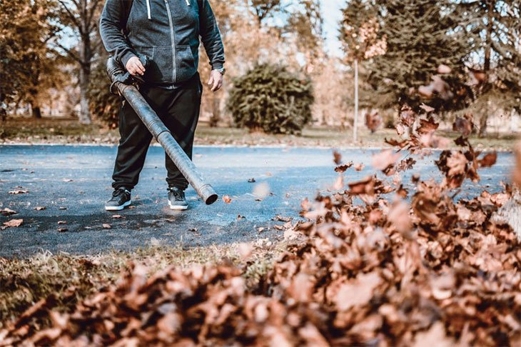 what's the best petrol leaf blower to buy