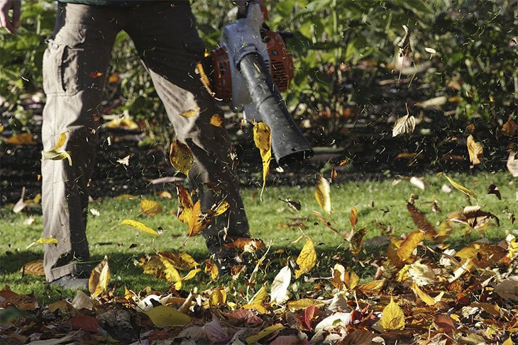 what's the best electric leaf blower to buy
