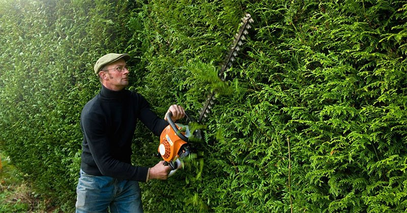 The Best Petrol Hedge Trimmer for Your Garden – 5 Most Popular Reviews on The Market