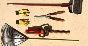 Everything There Is to Know About the Best Cordless Hedge Trimmer