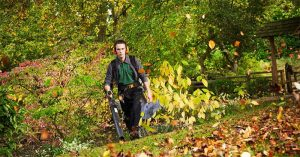 All You Should Know About The Best Cordless Leaf Blower In 2021: Top 11 List