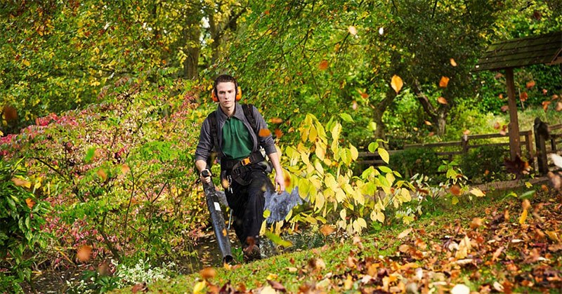 All You Should Know About The Best Cordless Leaf Blower In 2020: Top 9 List