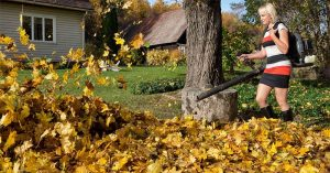 What Should You Look For In the Best Electric Leaf Blower