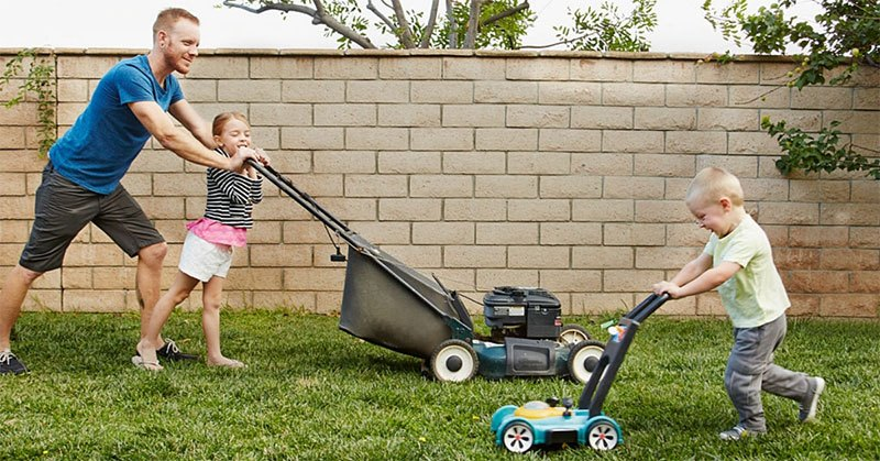 Improve Lawn Quality With the Best Mulching Mower!