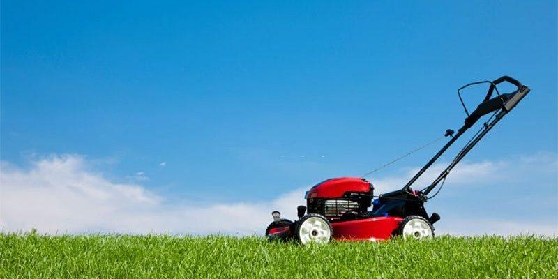 Best Lawn Scarifier