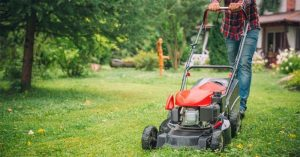 Perfect Your Lawn With The Best Lawn Mower For Stripes