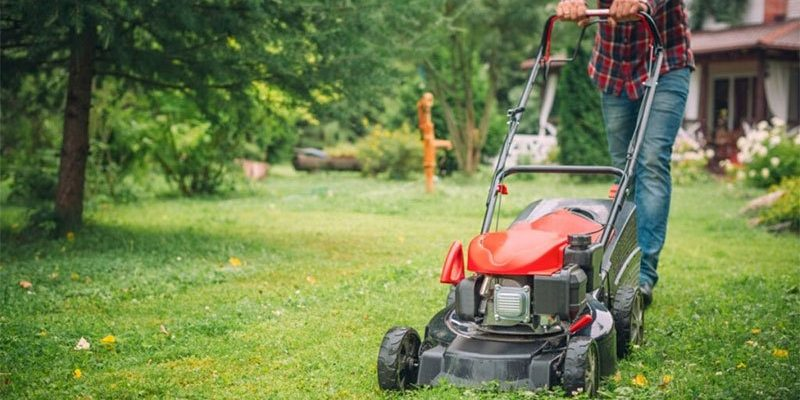 Best Lawn Mower For Stripes